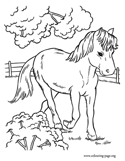 horse coloring pages by numbers running horse coloring pages az coloring pages