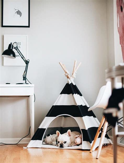 dog teepee bed best 25 cute dog beds ideas on pinterest cool dog beds