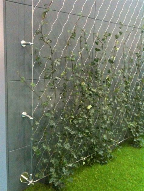 stainless steel wire   support climbers  green