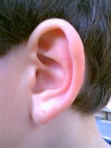 quel 226 ge ont vos oreilles faites le test vid 233 o