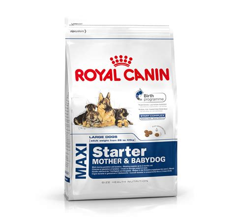 Royal Canin Maxi royal canin maxi starter 4 kg dogspot pet supply store