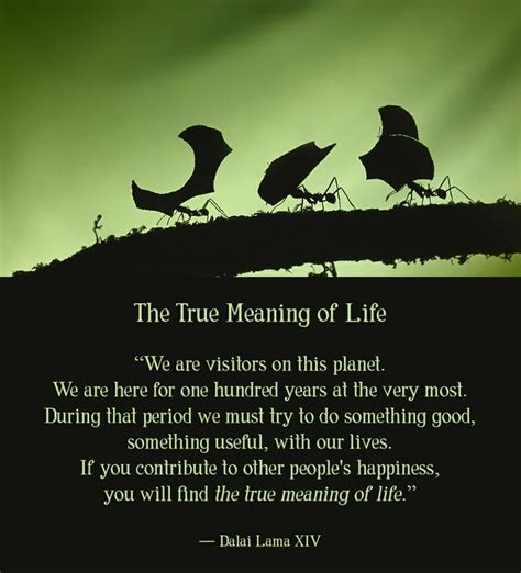 biography true meaning pin by natalie anthony on quotes life pinterest