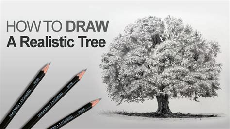 draw realistic christmas trees how to draw a tree realistic