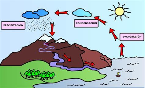 imagenes realistas concepto ciclo del agua para colorear imagui
