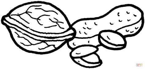 Walnut Peanut And Pistachio Nuts Coloring Page Free Nuts Coloring Pages