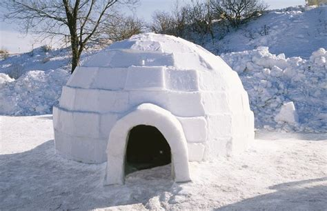 Igloo House | real igloo houses the hormesis bars ideas for the