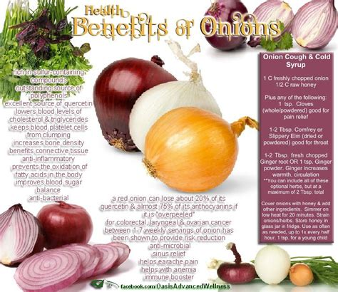 Health Benefits Of A Liver Detox by Health Benefits Of Onions Liver Cleansing Food Diet