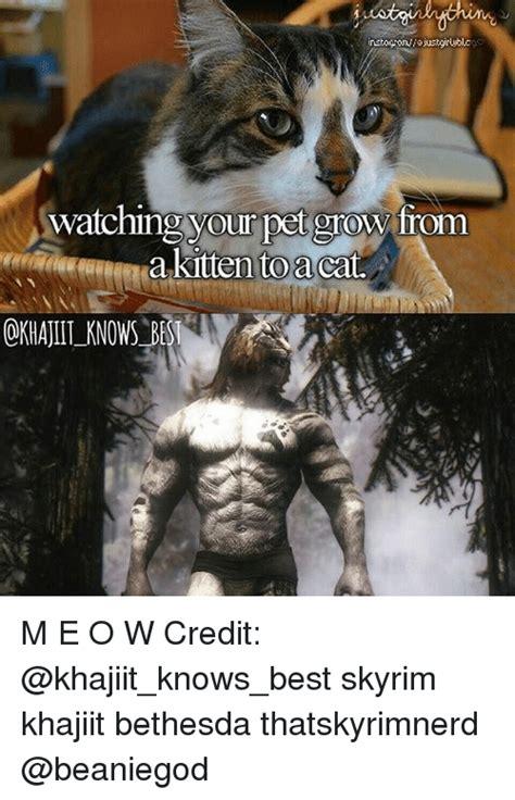 Khajiit Meme - 25 best memes about skyrim khajiit skyrim khajiit memes