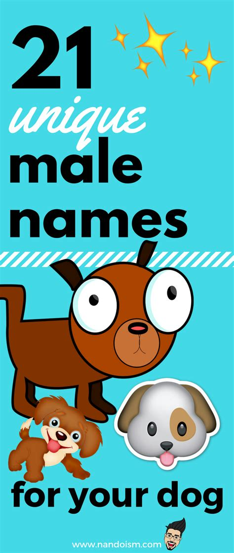 cool names for your house 21 unique names for your male dog