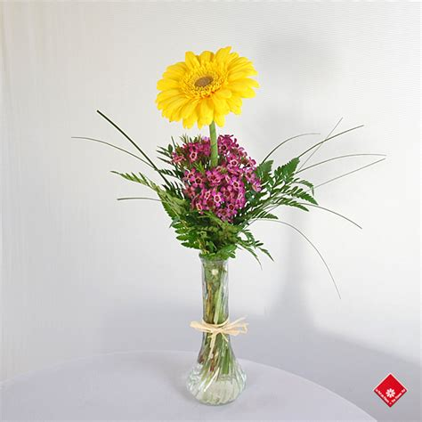 gerbera in single flower vase for local delivery 183 the