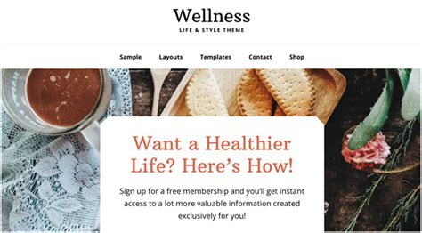 Studiopress Wellness Pro Theme 12 best themes for therapists