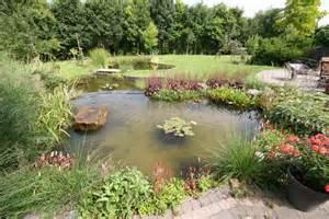 bassin de jardin naturel 224 lasne