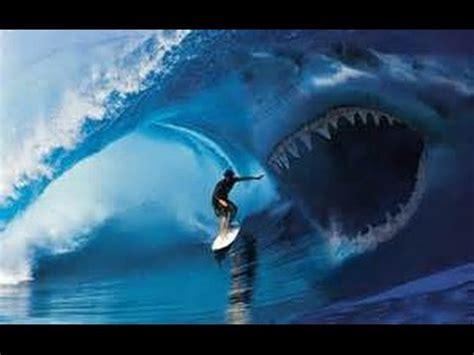 shark attacks surfer mick fanning & surf music dick dale