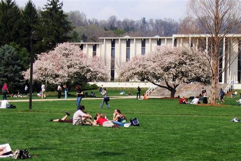 Mba Programs In Asheville Nc by Unc Asheville Unca Admissions Facts