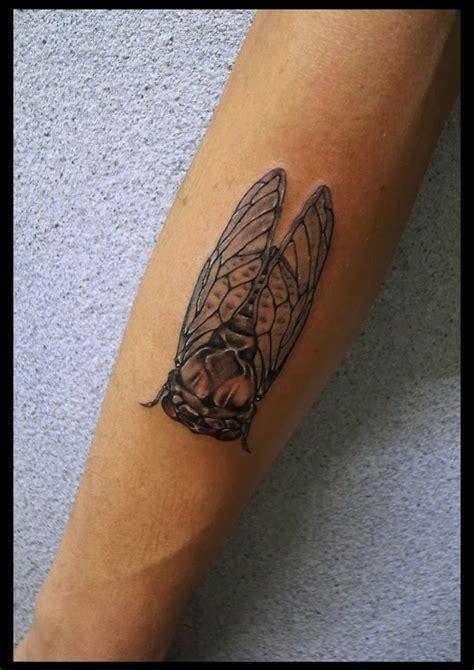 cicada tattoo cicada search tattoos cicada