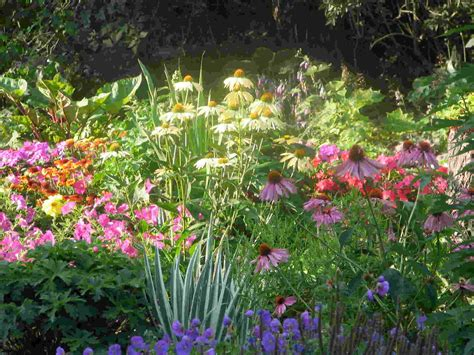 Perennial Flower Gardens Flower Garden Design Pictures Home And Garden Design