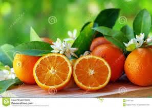 fiori e frutta frutta e fiori arancioni fotografia stock immagine 53351821