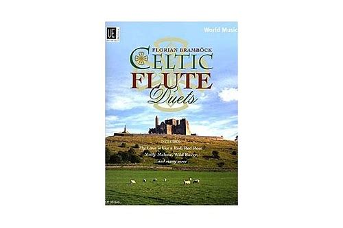 Gta jannat 2 free download softonic florian brambock celtic flute duets download gumiabroncs Image collections