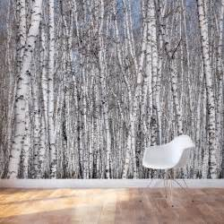 Trees Wall Mural White Birch Trees Wall Mural