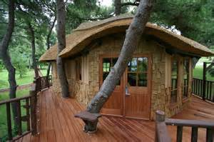 Tree Houses To Live In Amazing Cool Tree House Ideas Home Design