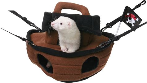 ferret beds and hammocks marshall hanging ferret hammock pirate ship chewy com