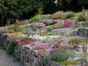 Rock Garden Perennials Growing Alpine Plants Perennials And Miniature Bulbs