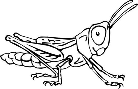 insect coloring book print out insects coloring pages printable