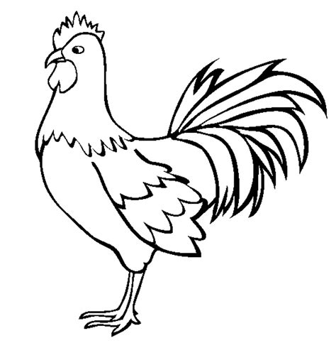 image result for rooster line drawing animal line