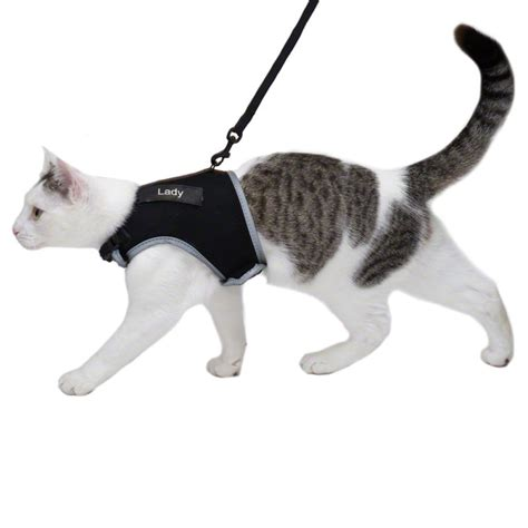 xl harness trixie xcat xl cat harness with lead great deals at zooplus