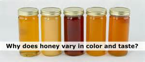 color of honey why does honey vary in color texture and taste the