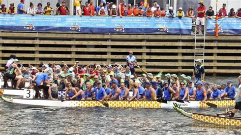 dragon boat nowra waterdragons sizzle at darling harbour south coast register