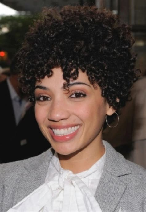 different hairstyles black hair pictures of different short curly black hairstyles