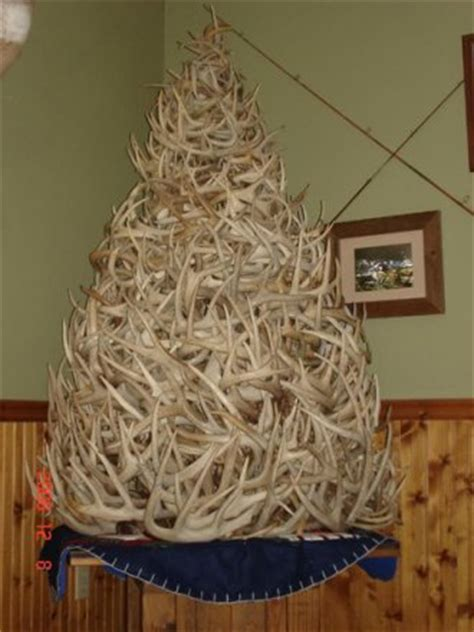 antler tree the 20 best shed antler trees gohunt