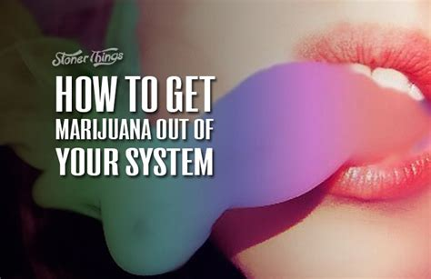 Detox To Get Out Of Your System by How To Get Marijuana Out Of Your System Stoner Things