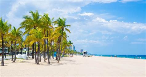 best fort lauderdale 25 best things to do in fort lauderdale florida