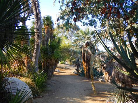 san diego part 4 the outdoor gardens of balboa park another walk in the park
