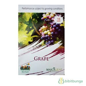 Maica Leaf Buah Strawberry Hijau Benih Tanaman 15 Benih benih maica leaf anggur mixed 15 biji jual tanaman