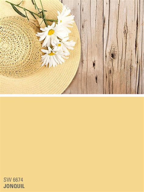 sherwin williams yellow paint color jonquil sw 6674 color inspiration paint