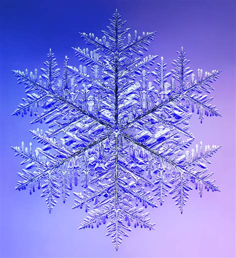 snowflake and snow crystal photographs image gallery snow crystals