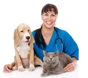 underwood veterinary hospitals columbus, ohio : underwood