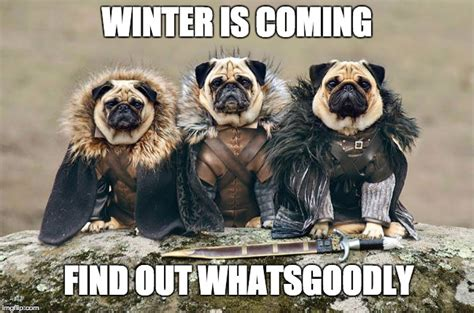 Meme Generator Winter Is Coming - winter is coming imgflip