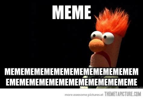 Funny Muppet Memes - a laugh on tuesday the muppets nenagh silent film festival