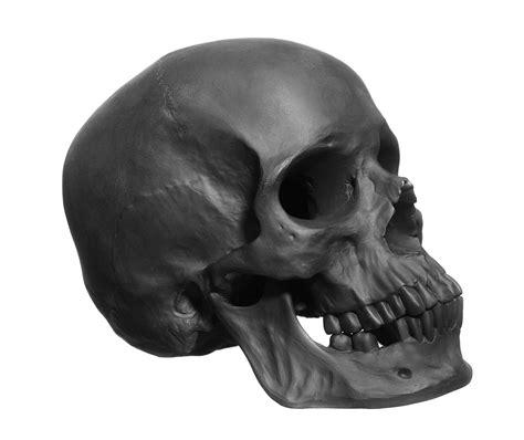 Black Skull bespoke global product detail skull black biscuit