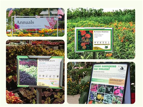 Garden Center Marketing by Buy Durable Plant Sign Holders For Your Plant Bench
