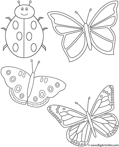 coloring pictures of butterflies and ladybugs three butterflies and ladybug coloring page insects