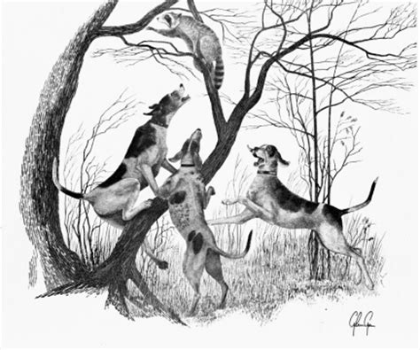 when the dogs bark treed a year on the trail of the longtails classic reprint books yessy gt silver river gallery gt wildlife etchings