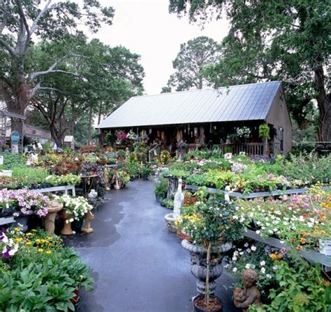 All Seasons Garden Center by Gallery Lafayette La All Seasons Nursery
