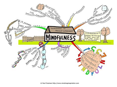 the mindful mind conquer overwhelm calm your mind reduce stress improve productivity create a of abundance books the lab the mindfulness project
