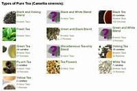 Tea Companies Classifying In Different Ways Alex Zorachs