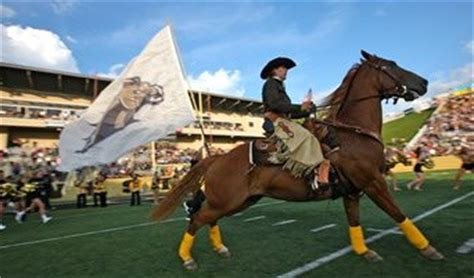 row the boat wmu shirt 23 best images about row the boat on pinterest football